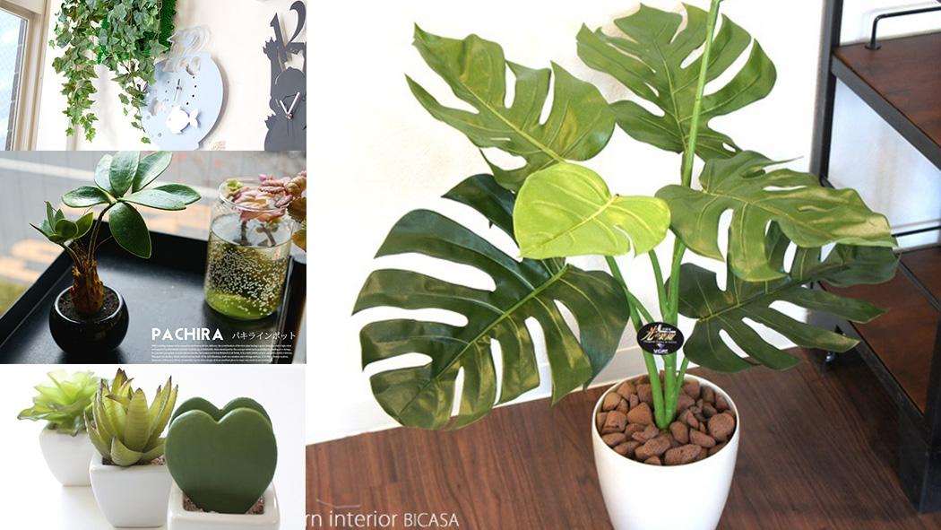 水が不要でおしゃれな人工観葉植物5選!光触媒機能で空気も浄化!