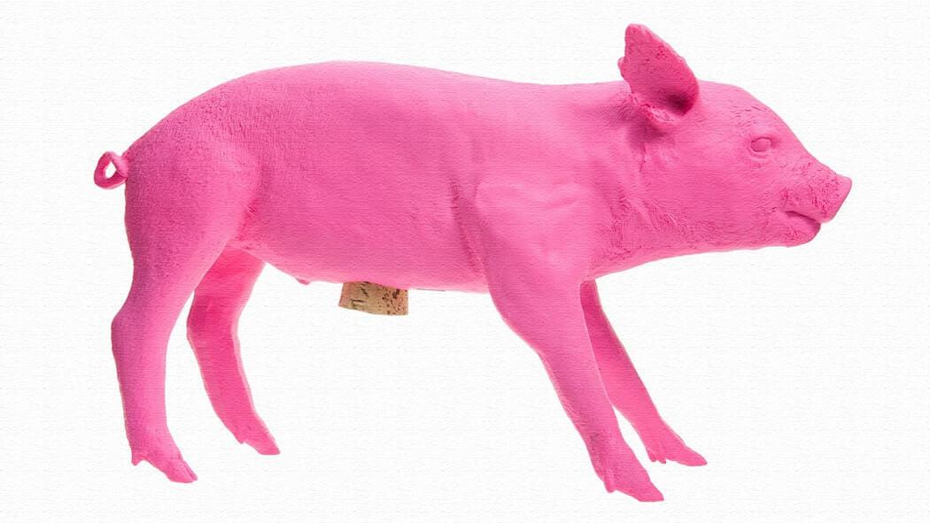 本物の豚の型の貯金箱「Bank In the Form Of A Pig」