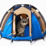 猫・小型犬用のミニュチュアテント!ドデカヒードロン テント